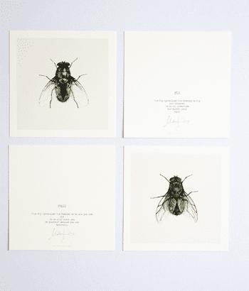 kunstkaarten insecten