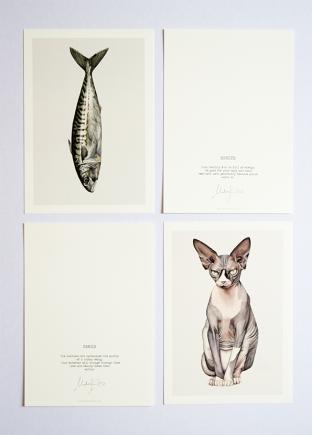 kunstkaarten kat en vis