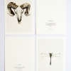 Kunstkaarten libelle