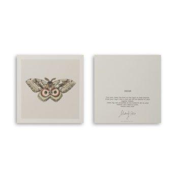 Dream Moth