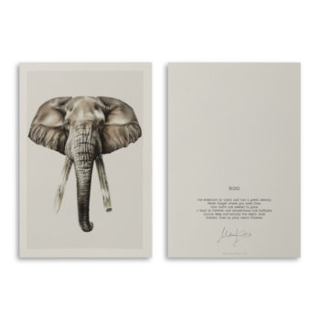 Bond elephant artcard