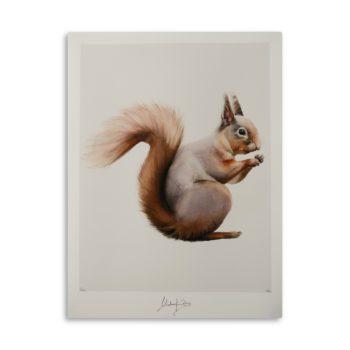 Manifest Squirrel Artprint
