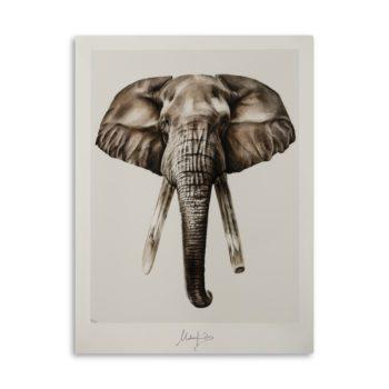 Bond elephant artprint
