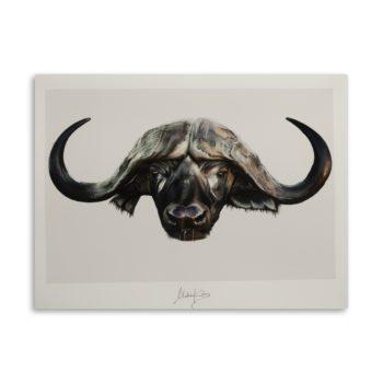 Courage buffalo