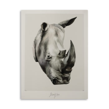 Determined Rhino Artprint