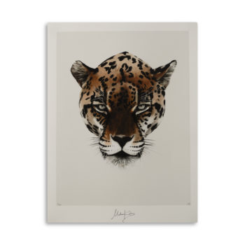 Wealth Leopard Artprint